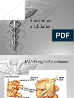 Sindromes_medulares
