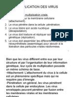 Multiplication Des Virus10