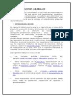 Analisis Del Sector Hidraulico