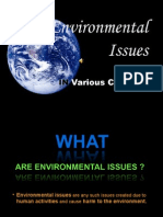 power point on environmental issues