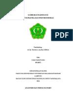 Referat Efusi Pleura & Pneumothorax (Ipeh)