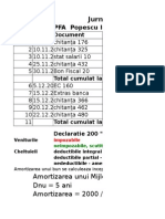 Exemplu Calcul PFA 2012