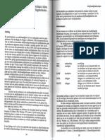 1991_23.pdf