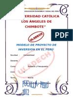 Modelo de Proyecto de Inversion en El Perú (2)