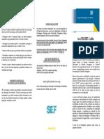 SEF _ nova Lei Estrangeiros.pdf