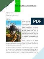 Calixto Garmendia Informe Oficial