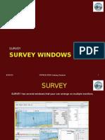2010 Survey Windows