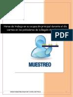 INFORME DE MUESTREO.docx