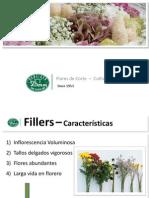 7 Danziger - Flores de Corte L.pinzon