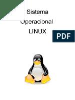 Conceitos Básicos Linux