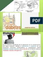 Diabetes Insipida y SIADTH