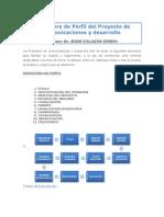 Estructura de un proyecto de Comunicaciones y Desarrollo
