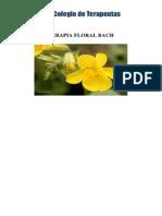 Apuntes Flores