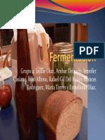 presentacion-fermentacion-resumida1