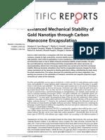 Enhanced mechanical stability of gold nanotips through carbon nanocone encapsulation