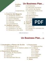 Indice Business Plan
