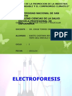 Electroforesisi