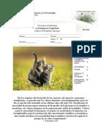 Pr Biologìa s1 2015 Guía 2 Eleg Cog Petralanda