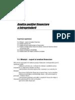 l Analiza Pozitiei Financiare