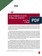 Factor Clave de Exito
