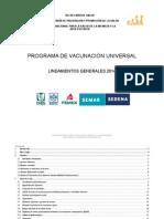 LINEAMIENTOS PVU 2014.docx