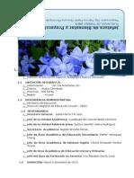 Plan de JPBS 2013.docx