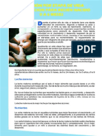 ALIMENTACION-0A6MESES