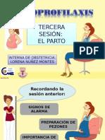 3era Sesión PPO