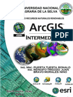 Manual Arcgis Intermedio