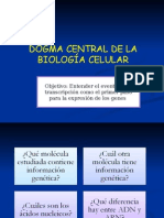12_Dogma_central_de_Biologia_Celular2.ppt