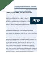 El enfoque Modular-Transformacional de la psicopatolog+¡a su aplicaci+¦n al problema de la dependencia de drogas
