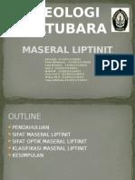 MASERAL LIPTINIT PPT