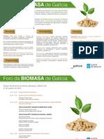 Programa ForoBiomasa (2)