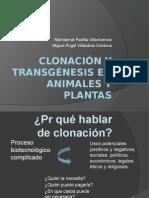 Clonacion y Transgenesis