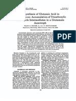 Biosynthesis of Glutamic Acid in Saccaromyces.pdf
