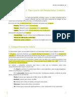 Bioquímica Tema 2 (Fase común metabolismo)