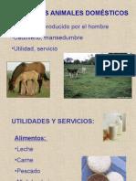1ra Clase Zootecnia