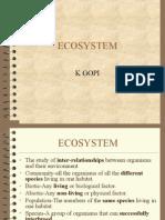 Ecosystem Mine