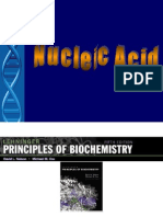 BS - Nucleic Acid