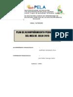 PLAN DIFERENCIADO - JULIO.docx