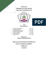 Kelompok 2 Pemeriksaan Fisik Sistem Imun