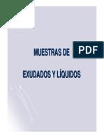 UT11 Muestras Exudados y Liquidos Presentacion