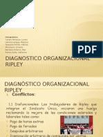 Diagnostic o Organ i Zac Ional Ripley