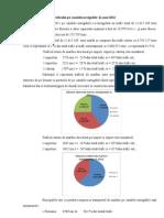 Analiza Trafic 2011