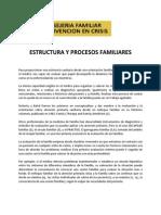 Estructura y Procesos Familiares