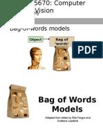 Lec29 Bag of Words