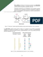 11_carbohidratos2