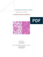 a-epitelio-revestimiento.pdf