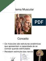 Aula Sistema Muscular