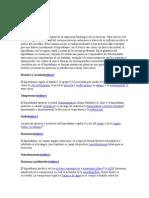 Funciones Del Hipotalamo 45